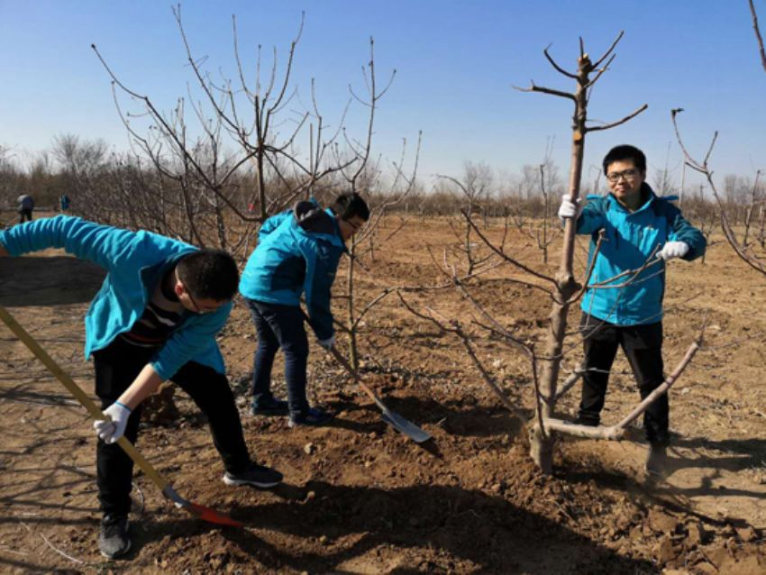 点击查看详细信息<br>标题:植树节活动 阅读次数:422